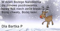 dla-bartosza-p